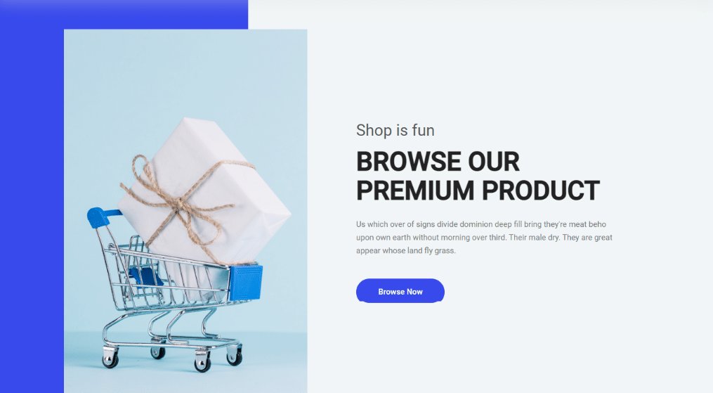 eCommerce Online Shopping ASP.NET Project Source Code