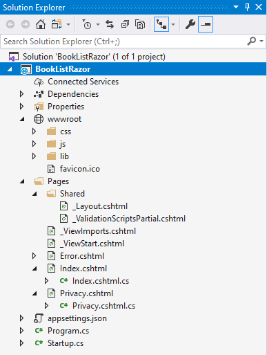 files and folder structure asp.net core